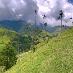 KOLUMBIA – Andy & Karaiby