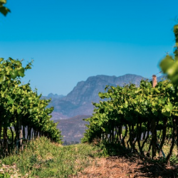 RPA winem płynące… – 8-dniowa wyprawa marzec 2020