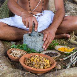 Sri Lanka – całoroczny kierunek na odpoczynek