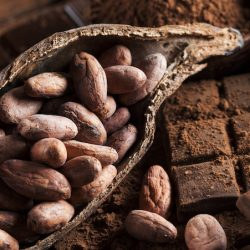 Kakaowiec – kakao & czekolada